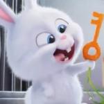 Răng thỏ xấu hay đẹp? Đánh giá qua cái nhìn của chuyên gia